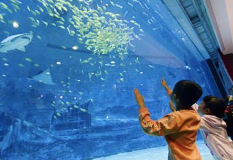 """""""青少年海洋教育协同创新中心""""落户青岛 向全国征集海洋教育案例"""