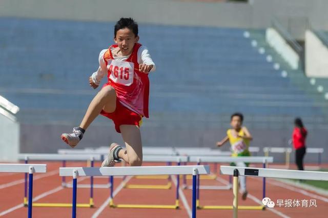 五大亮点!青岛学校体育事业开启全国领先地位新局面