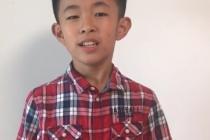 陈昱霖:五年级下学期第9课《古诗三首》